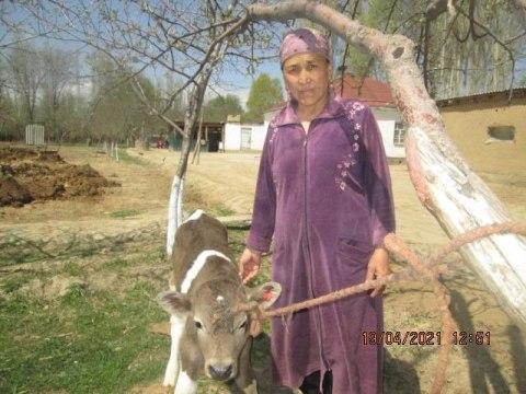 photo of Shaarbubu