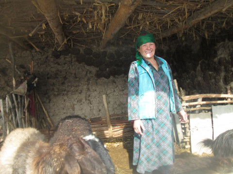 photo of Buaira