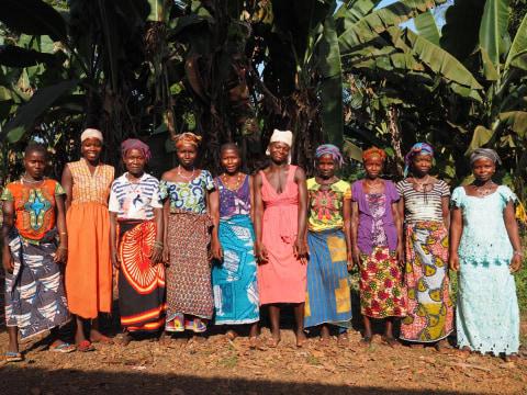 photo of Kadiatu B's Female Farmers Group