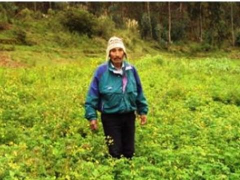 photo of Martiriano