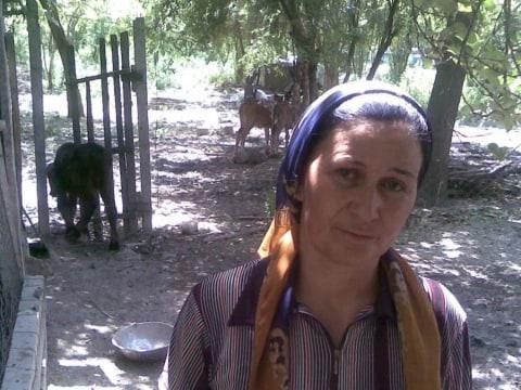 photo of Sura