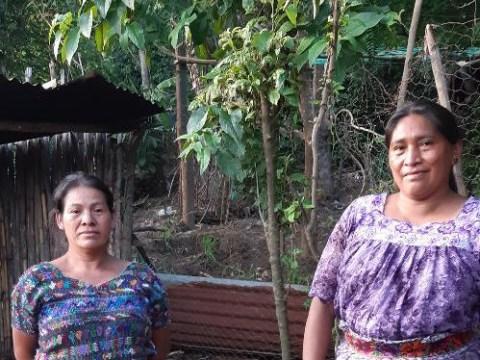 photo of Dúo Mujeres En Accion I Group