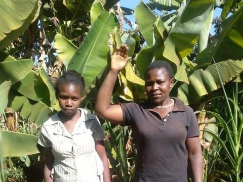 photo of Mwicariria Self Help Group