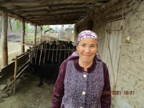 photo of Kulumkan