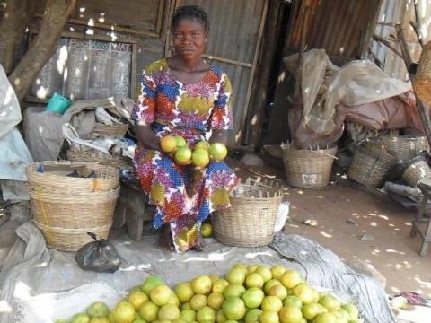 photo of Akou