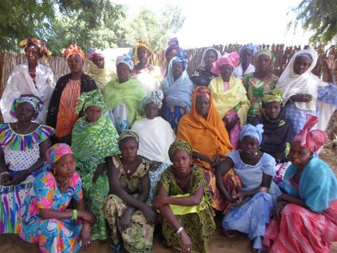 photo of Ndiaya's Group