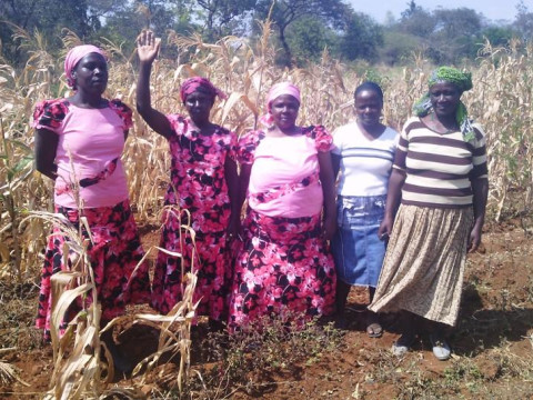 photo of Kithimani S.a.upendo Self Help Group