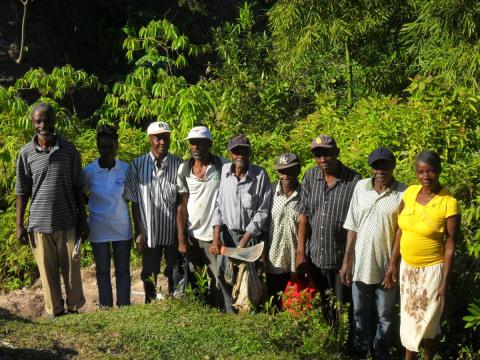 photo of Mouvman Peyizan Plantè Mago
