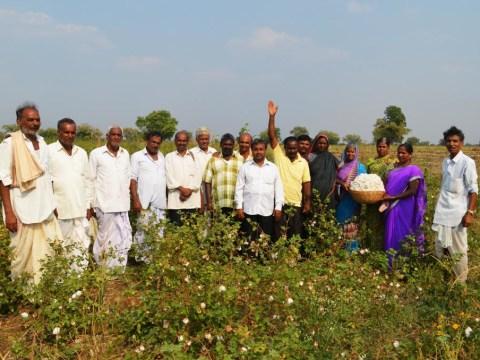 photo of Desi Cotton Growers Association Group