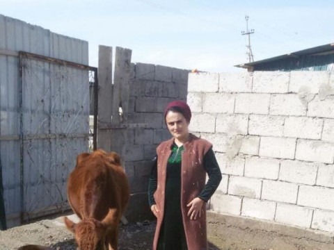 photo of Gulnorai