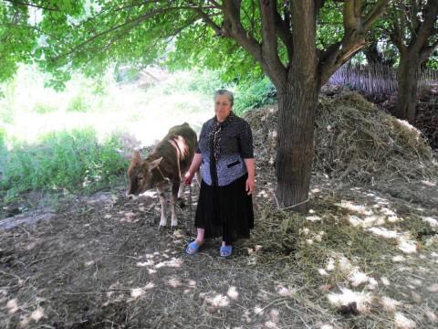 photo of Aybaniz