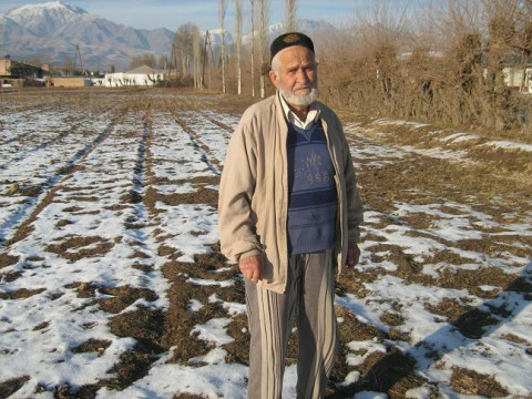 photo of Karomat