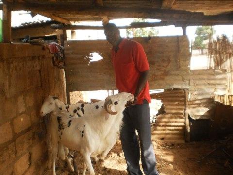 photo of Cheikh Oumar