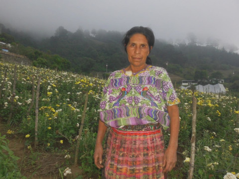 photo of Catarina