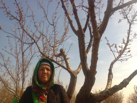 photo of Mutabar