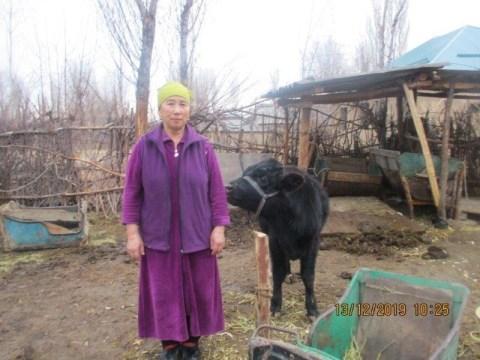 photo of Akchabu