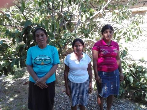 photo of Alfareras El Cantaron Group