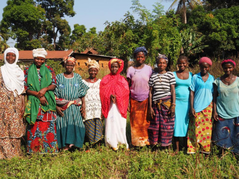 photo of Adama's Female Farmers Group