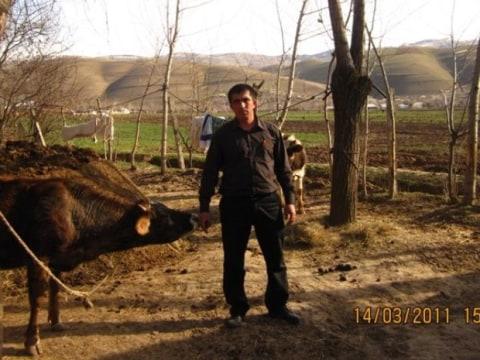 photo of Kiyomidin
