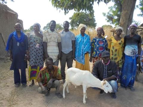 photo of Nyesigi Group