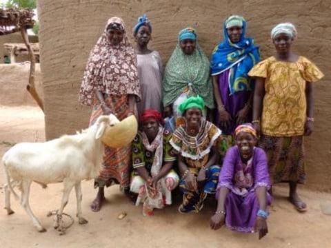 photo of Benkadi N°Ii Group