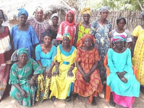 photo of 01_Ndiassanekd Group