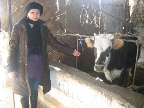 photo of Chynara