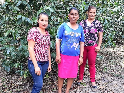 photo of Productoras Bendecidas Caño De La Cruz Group