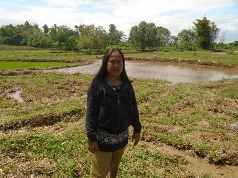 photo of Amada