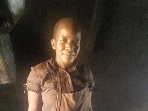 photo of Polline