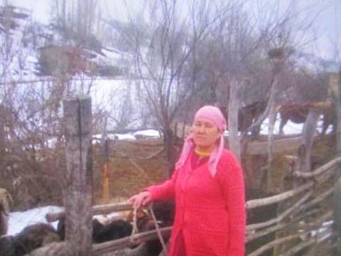 photo of Barnokhon