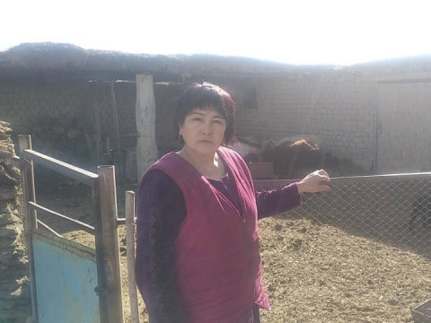 photo of Latyipa