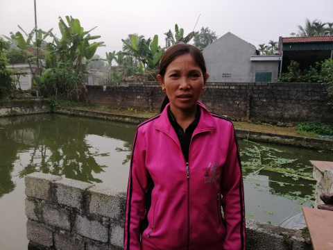 photo of Hòe