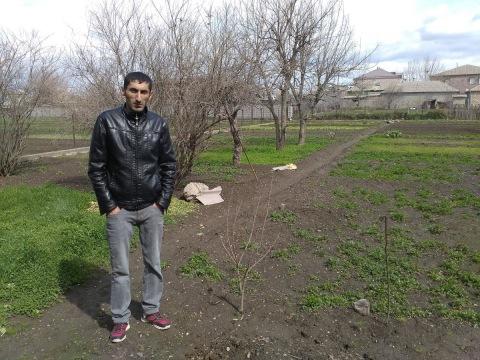photo of Novrast
