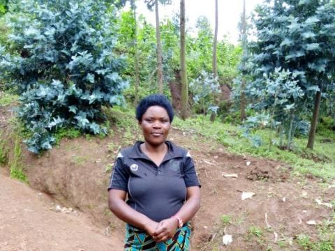 photo of Amahirwe Tcb Group
