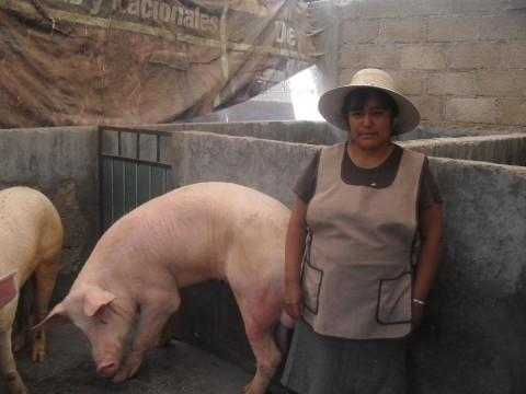 photo of Neliberta