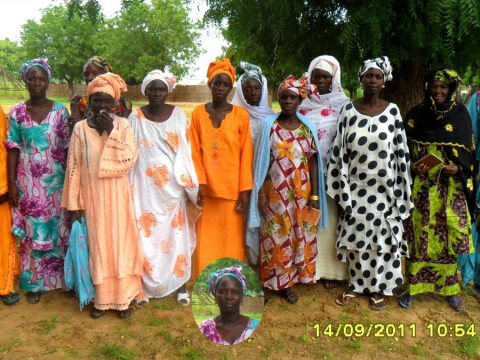 photo of Sopp Mame Diarra Group