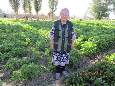 photo of Burul