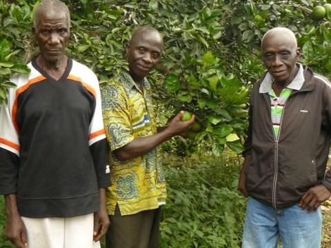 photo of Nyame Nhyehyie Group