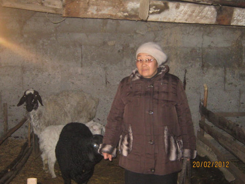 photo of Roza