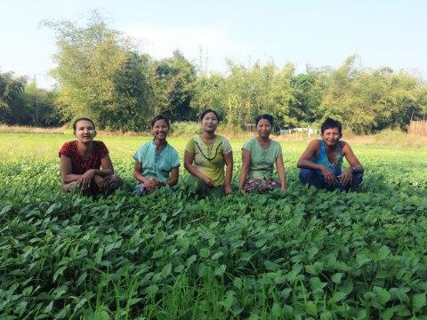 photo of War Kaug Taw Village Group