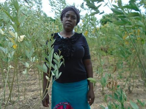 photo of Nduku