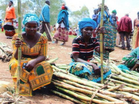 photo of Groupe Sikumingi