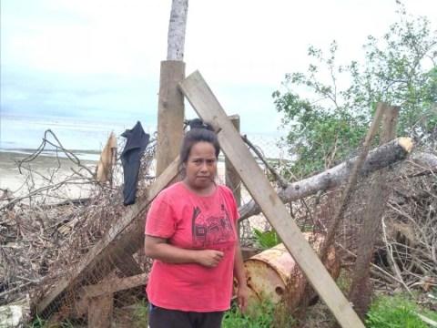 photo of Teiraniwau
