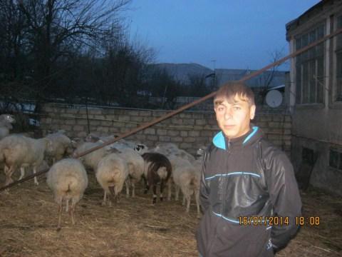 photo of Sashik