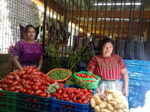 photo of Dúo Primavera Group
