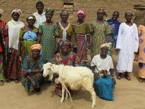 photo of Benkadi Ii Group