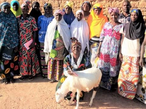 photo of Maloyamagni Group