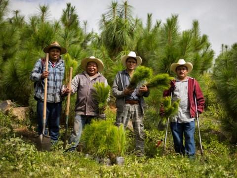 photo of Por El Futuro De Patamban Group