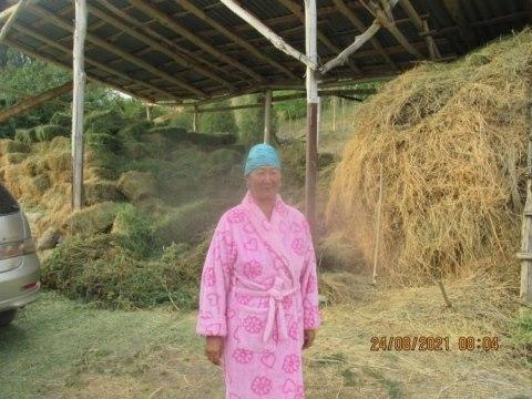 photo of Jibek